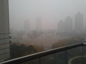 Quello che si vede oggi dal balcone di casa mia